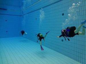 yokokoku diving
